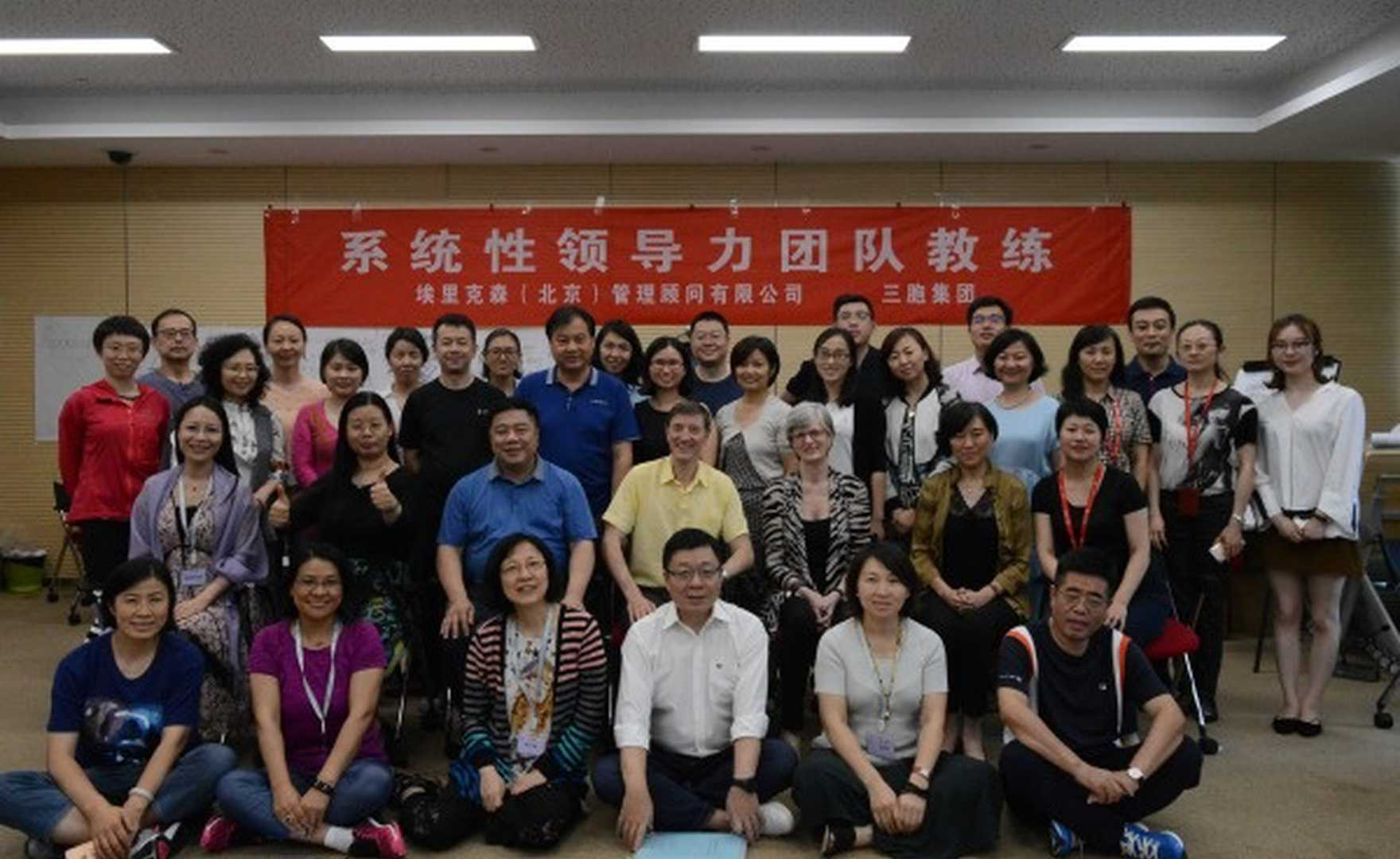 First experience of Systemic Team Coaching Programme in China
