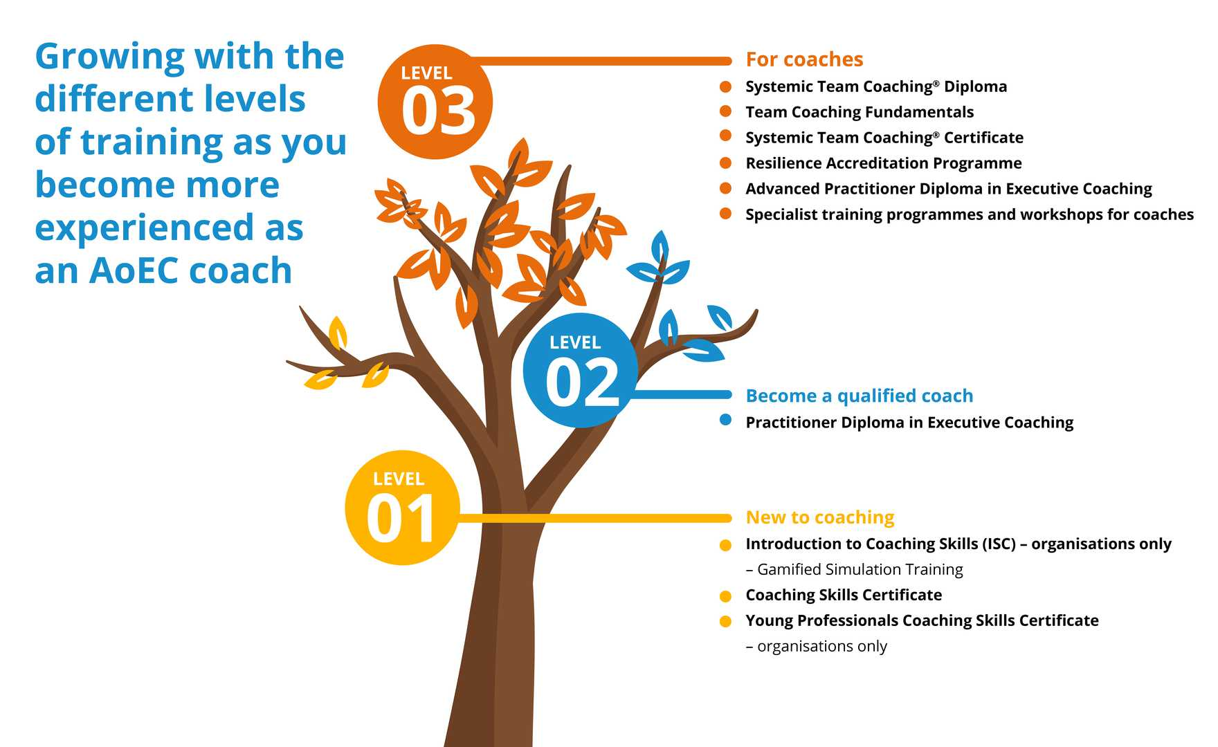 Coaching Levels Infographic - tree